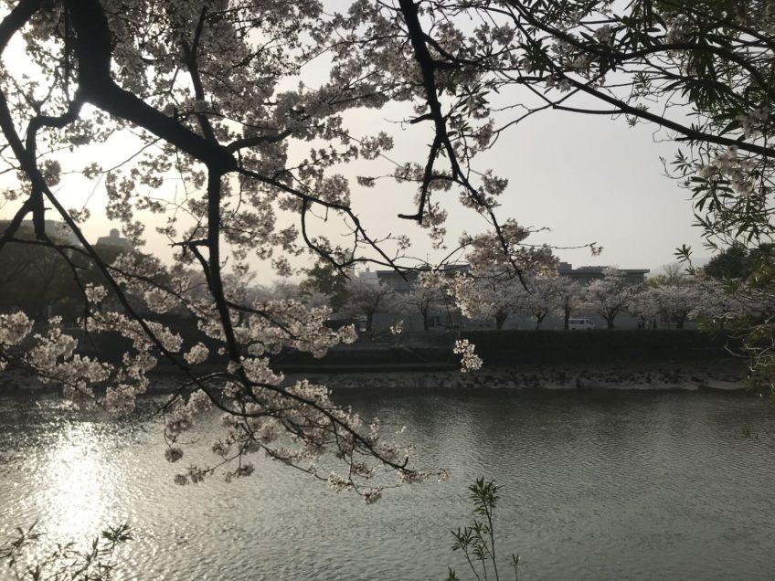 3月30日(火)プラクティクス(練習)